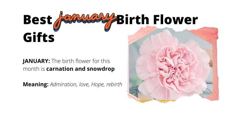 January Birth Flower Gifts